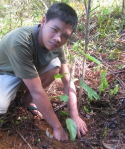 Arman, one of the APC dormers, planting lawaan seedlings