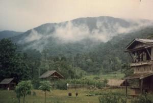 Bendum: Landscape