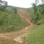 over 50 landslides