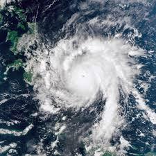 Community: Typhoon Bopha/Pablo