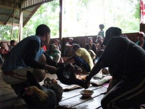 The rituals performed during the Kaamulan