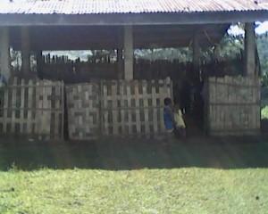 The school building in Mindagulus