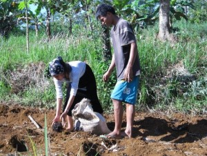 Youth doing gardening as part of the Agroforestry program.